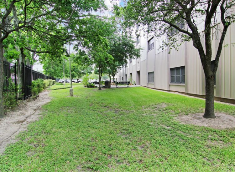 exterior-yard.jpg